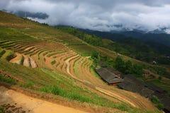 Terraza de Longji, Guilin Fotos de archivo libres de regalías