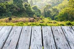 Terraza de madera sobre fondo verde del bosque Foto de archivo libre de regalías
