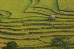 Terraza del arroz en Vietnam Fotos de archivo libres de regalías