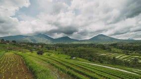 Terraza del campo del arroz de Bali Jatiluwih en Bali Indonesia en un día en parte nublado metrajes