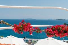 Terraza en la isla de Corfú con las flores de la buganvilla Fotografía de archivo libre de regalías