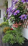 Terraza moderna con muchas flores Fotos de archivo libres de regalías
