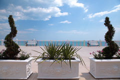 Terraza que pasa por alto el mar, la barandilla blanca, el banco y el boj Foto de archivo libre de regalías