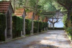 Terraza rodeada por el verdor Foto de archivo libre de regalías