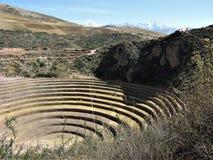 Terrazas agrícolas del Moray, valle sagrado, Perú imágenes de archivo libres de regalías