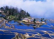 Terrazas azules del arroz del yuanyang Imágenes de archivo libres de regalías
