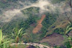 Terrazas con arroz en valle del PA del Sa en Vietnam imagen de archivo