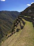 Terrazas de Machu Picchu Foto de archivo libre de regalías