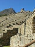 Terrazas de Machu Picchu que miran para arriba a la choza Fotografía de archivo