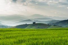Terrazas del arroz Imagenes de archivo