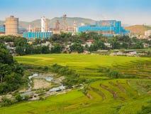 Terrazas del arroz con el fondo de la fábrica Imagen de archivo
