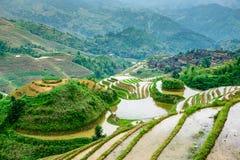 Terrazas del arroz de Guilin Imagenes de archivo