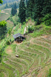 Terrazas del arroz de Longji Fotos de archivo