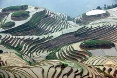 Terrazas del arroz de Longji, China Imagen de archivo