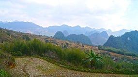 Terrazas del arroz de Vietnam del norte Fotografía de archivo