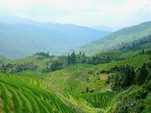 Terrazas del arroz en Guilin, China Imágenes de archivo libres de regalías