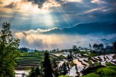 Terrazas del arroz y luz de la difracción