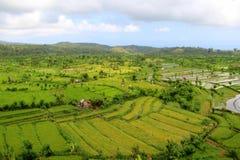 Terrazas del campo del arroz Fotos de archivo