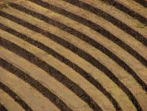 Terrazas del inca en Pisac Imagen de archivo libre de regalías