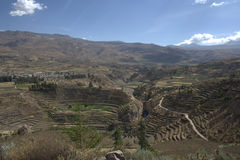 Terrazas en Colca Canon Foto de archivo