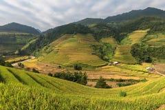 Terrazas hermosas del arroz, Asia sudoriental Fotografía de archivo libre de regalías