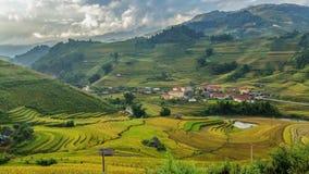 Terrazas hermosas del arroz, Asia sudoriental, Vietnam Imágenes de archivo libres de regalías