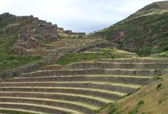 Terrazas típicas de los incas Imágenes de archivo libres de regalías