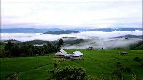 Terrazas y niebla del arroz en Chiang Mai almacen de metraje de vídeo