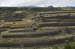 Terrazzamento agricolo sviluppato con la lava-pietra Fotografie Stock Libere da Diritti