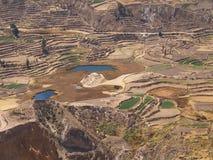 Terrazzi in canyon di Colca Immagini Stock Libere da Diritti