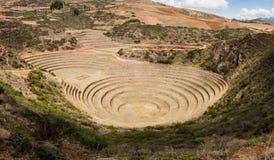 Terrazzi circolari di inca antica all'esperimento agricolo di Moray fotografia stock libera da diritti