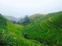 Terrazzi dei risi di Pingnan Fotografia Stock Libera da Diritti