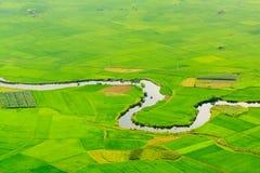 Terrazzi del giacimento del riso Fotografie Stock