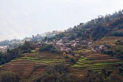 Terrazzi del giacimento del riso al Nepal centrale Fotografie Stock