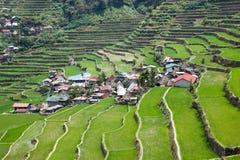 Terrazzi del giacimento del riso di Batad, provincia di Ifugao, Banaue, Filippine Fotografie Stock