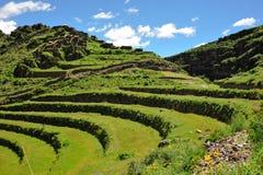 Terrazzi del pendio di collina in valle di Urubamba, Perù Fotografia Stock Libera da Diritti