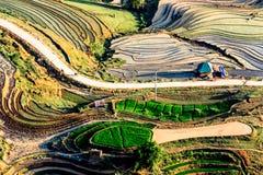 Terrazzi del riso della gente etnica di H'Mong in Northenr Vietnam alla stagione di riempimento dell'acqua (maggio 2015) Immagini Stock Libere da Diritti