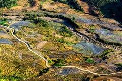 Terrazzi del riso della gente etnica di H'Mong in Northenr Vietnam alla stagione di riempimento dell'acqua (maggio 2015) Fotografia Stock Libera da Diritti