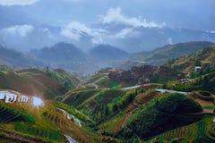 Terrazzi del riso della spina dorsale del drago Fotografie Stock