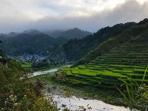 Terrazzi del riso di Banaue immagini stock libere da diritti
