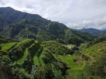 Terrazzi del riso di Banaue fotografie stock libere da diritti