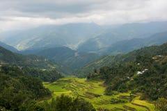 Terrazzi del riso di Banaue, Filippine Fotografia Stock Libera da Diritti
