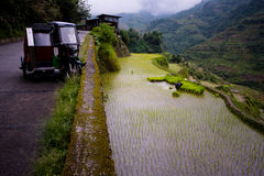 Terrazzi del riso di Banaue, Filippine Fotografia Stock