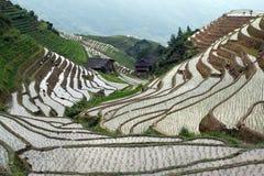 Terrazzi del riso di Longji fotografia stock libera da diritti