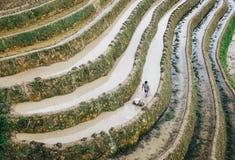 Terrazzi del riso, montagna di Yaoshan, Guilin, Cina fotografia stock