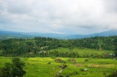 Terrazzi del riso nel Bali Il villaggio è in una valle fra i terrazzi del riso Coltivazione nel Nord del Bali, Indonesi del riso Fotografie Stock Libere da Diritti