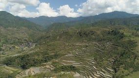 Terrazzi del riso nelle montagne Immagine Stock