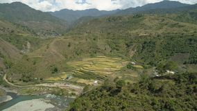 Terrazzi del riso nelle montagne Immagini Stock