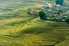 Terrazzi del riso sulla montagna Fotografia Stock