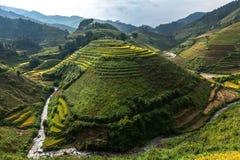 Terrazzi del riso sulla montagna Fotografia Stock Libera da Diritti